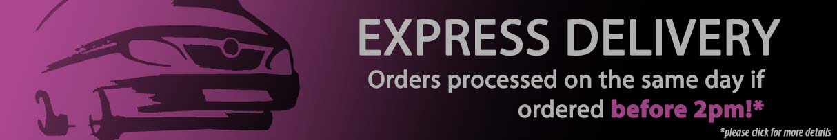 Hair Extensions   Next Day Delivery as Standard!*